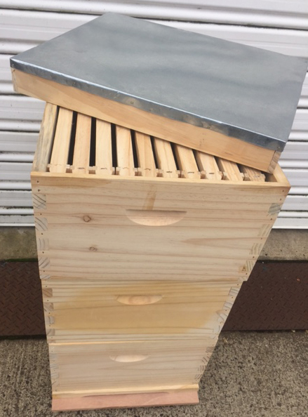 Triple Beehive - Full Depth Assembled Hive with Assembled Frames